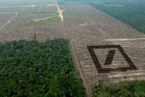 Der kampf gegen den hunger un nachhaltigkeitsagenda 2015 for Internorm g wert