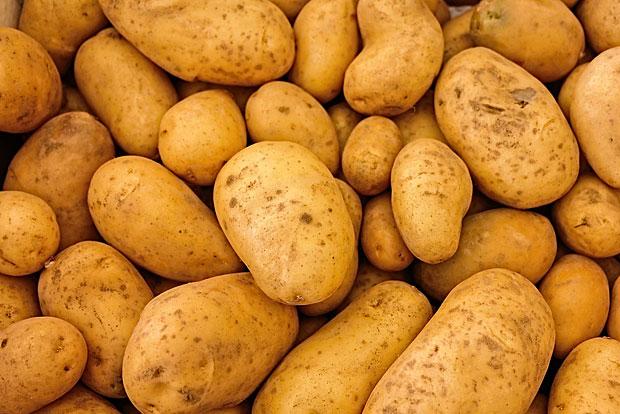 11. Kartoffel