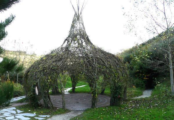 Willow onion - flickr - Glamhag