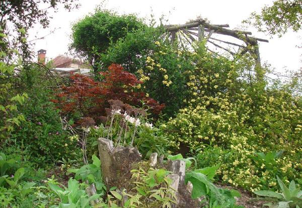 Diverser Garten